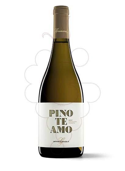 Photo Gramona Pinoteamo white wine
