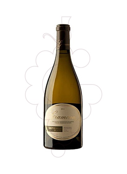 Photo Gramona Sauvignon Blanc Magnum white wine