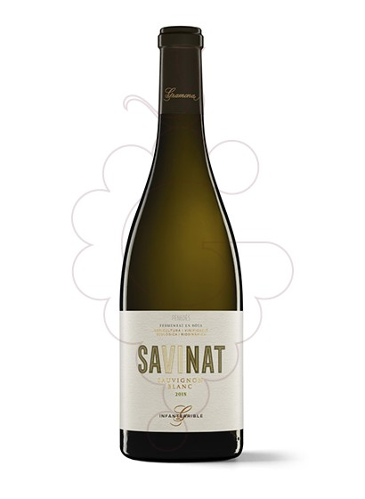 Photo Gramona Sauvignon Blanc white wine