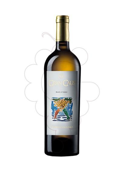 Photo Gran Caus Blanc white wine