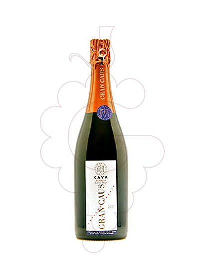 Photo Gran Caus Rosat Brut Nature sparkling wine
