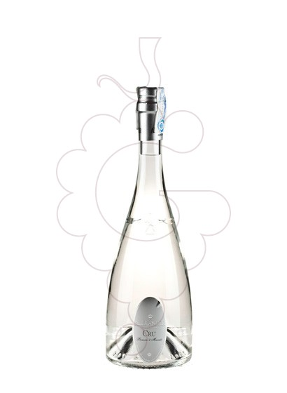 Photo Grappa Grappa Alexander Cru