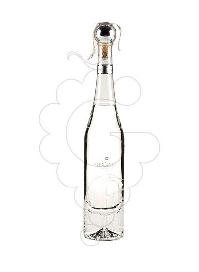 Photo Grappa Grappa Alexander Discovery