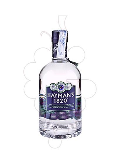 Photo Gin Hayman's 1820