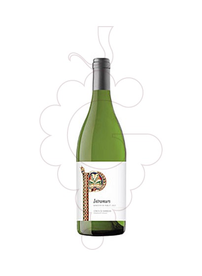 Photo Intramurs de Poblet Blanc  white wine