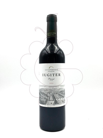 Photo Iugiter red wine