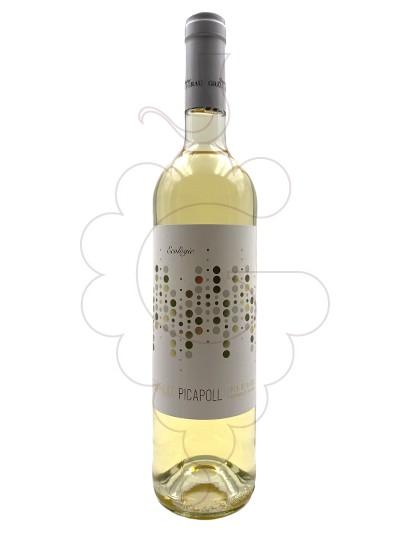 Photo Jaume Grau Grau Picapoll fermentació barrica white wine