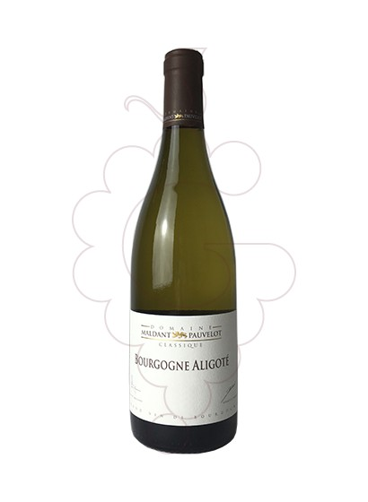 Photo Maldant Bourgogne Aligoté white wine