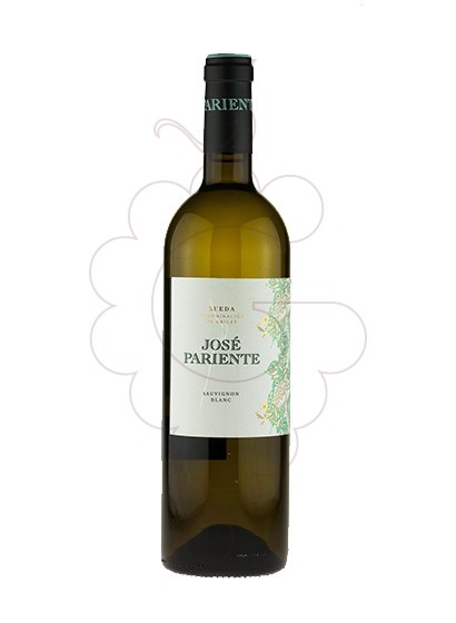 Photo José Pariente Sauvignon Blanc white wine