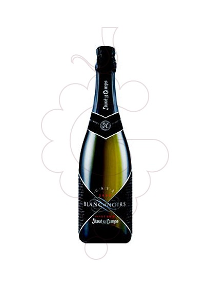 Photo Juve i Camps Blanc de Noirs sparkling wine