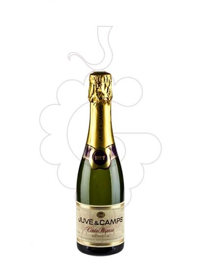 Photo Juve i Camps Reserva Brut (mini) sparkling wine