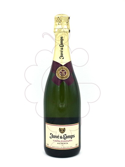 Photo Juve i Camps Reserva Brut sparkling wine