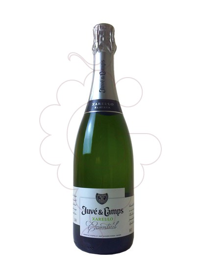 Photo Juve i Camps Xarel·lo Reserva sparkling wine