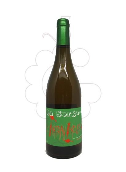Photo White La Sorga Intravineuse white wine