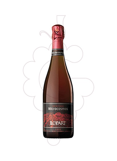 Photo Llopart Microcosmos rose  sparkling wine