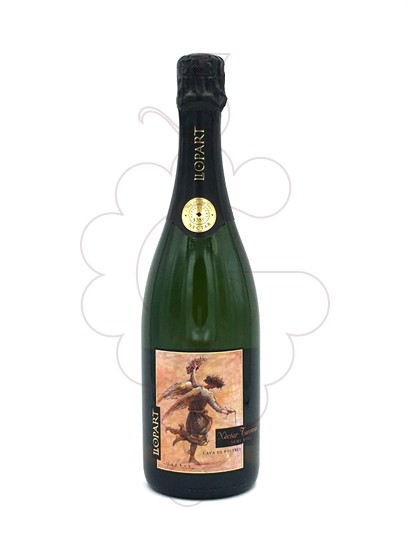 Photo Llopart Nectar Terrenal Semi-Sec sparkling wine
