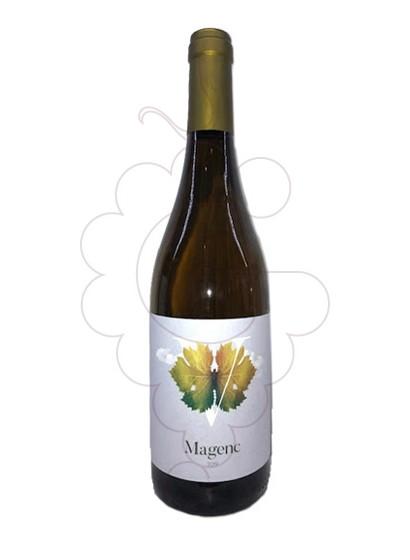 Photo Magenc white wine