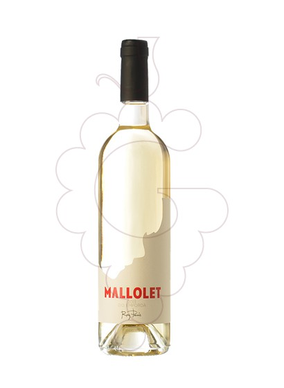 Photo Mallolet Blanc white wine