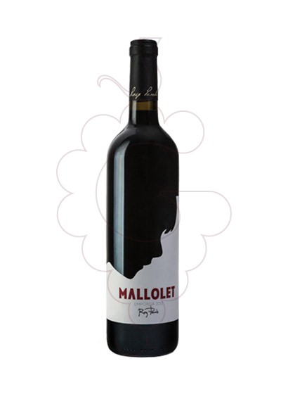 Photo Mallolet Negre red wine
