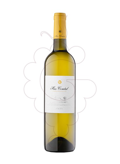 Photo Mas Comtal Pomell de Blancs white wine