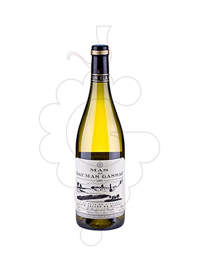 Photo White Mas Daumas Gassac white wine
