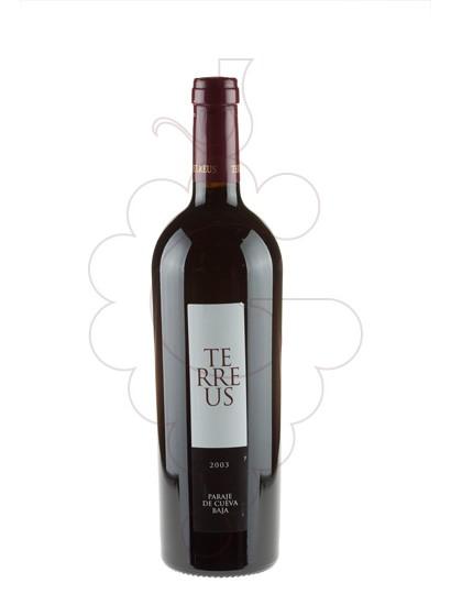 Photo Mauro Terreus red wine