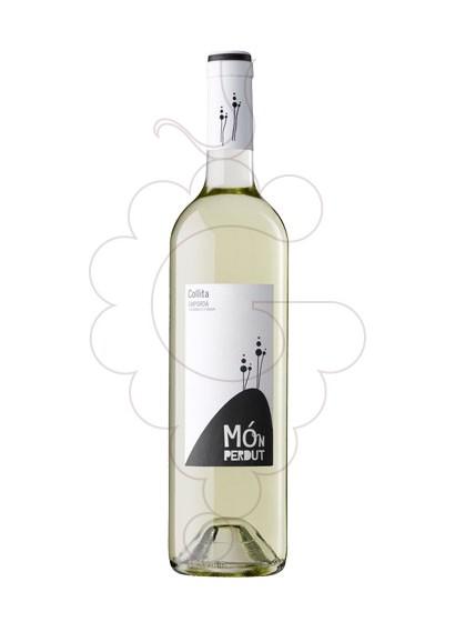 Photo Mon Perdut Blanc white wine