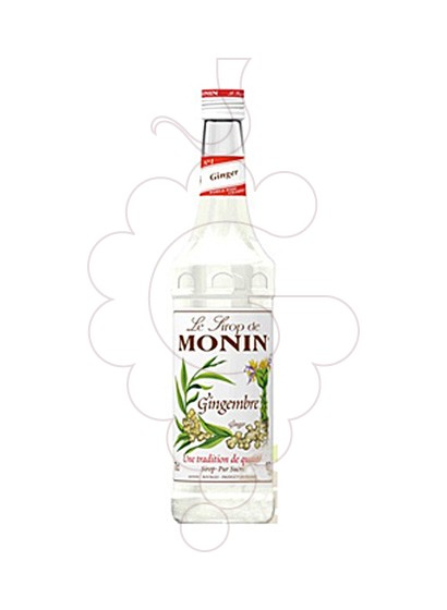 Photo Syrups Monin Gingembre (s/alcohol)