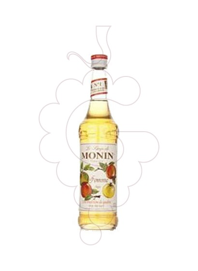 Photo Syrups Monin Pomme (s/alcohol)