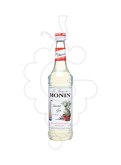 Photo Syrups Monin Saveur Gin (s/alcohol)