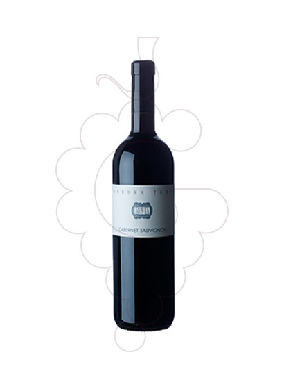 Photo Movia Cabernet Turno  red wine