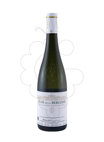 Photo Nicolas Joly Clos de la Bergerie white wine