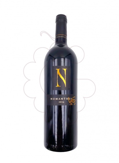 Photo Numanthia red wine