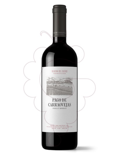 Photo Pago Carraovejas  red wine