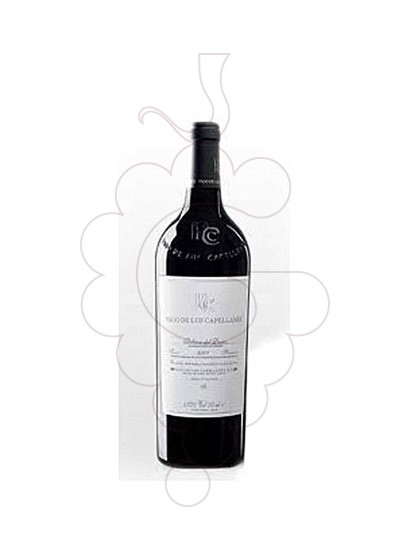 Photo Pago de Capellanes Reserva Magnum red wine