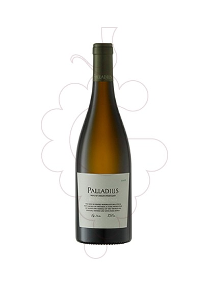 Photo Palladius Blanc white wine