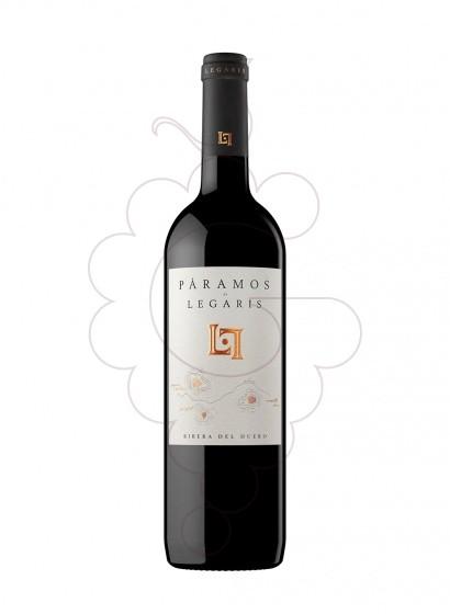 Photo Páramos de Legaris red wine
