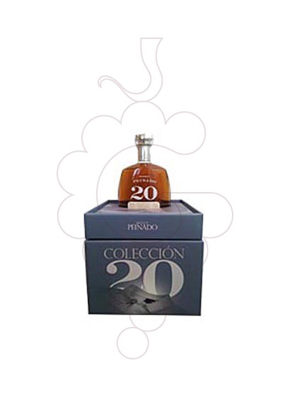 Photo Brandy Peinado Col·lección 20 Years