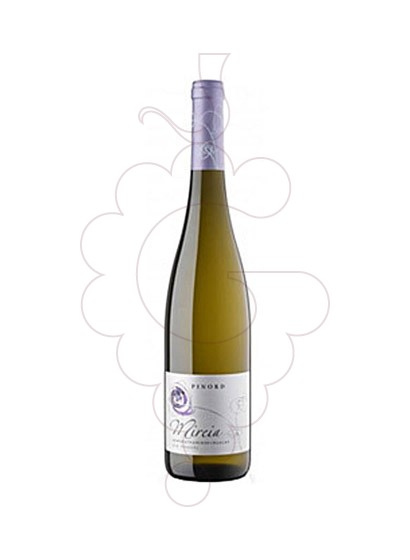 Photo Pinord Mireia  white wine