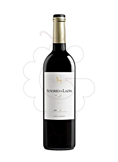 Photo Señorío de Lazán Reserva Magnum red wine