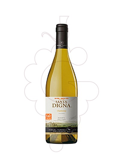Photo Sta. Digna Chardonnay  white wine
