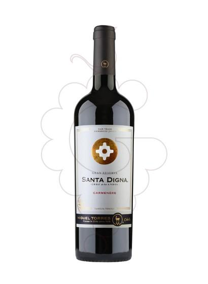 Photo Sta. Digna Negre Carmenere red wine