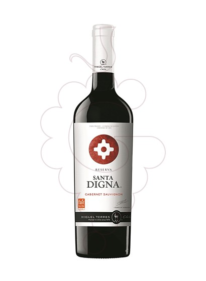 Photo Sta. Digna Negre Sauvignon red wine