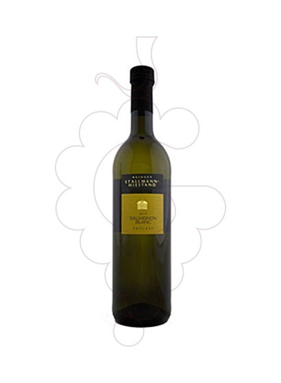 Photo Stallmann Hiestand Sauvignon Blanc white wine