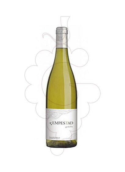 Photo Tempestad Godello white wine