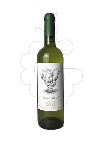 Photo White Terra de Pau white wine