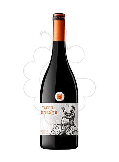 Photo Terra de Vents red wine