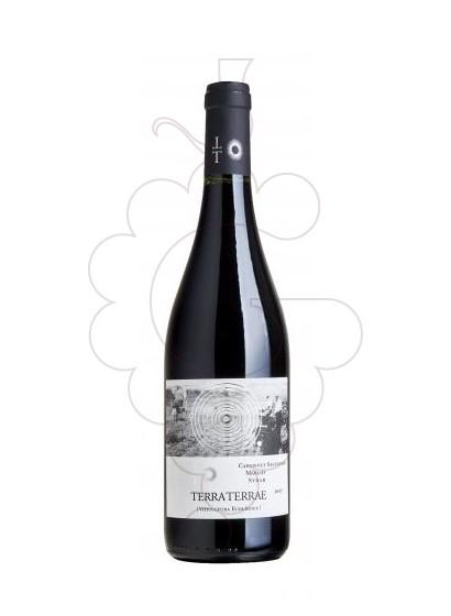 Photo Red Terra Terrae red wine
