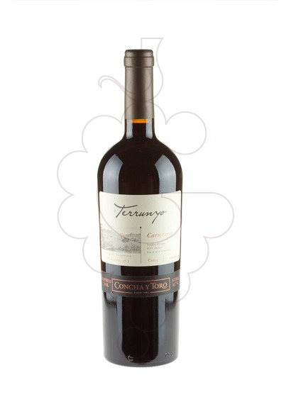 Photo Terrunyo Carmenere red wine