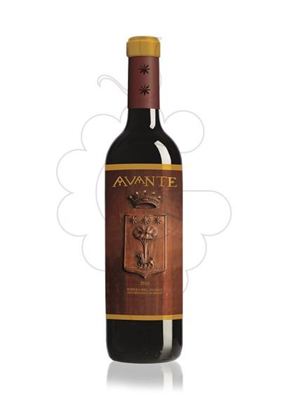 Photo Tineta Avante  red wine
